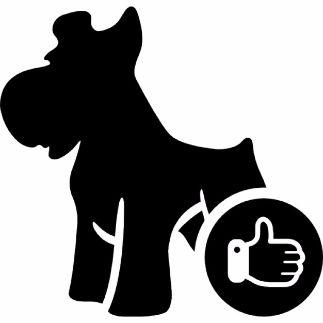 Het beste voor uw hond